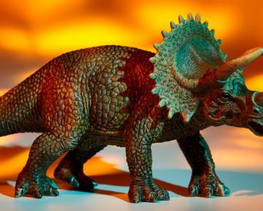 Dinosaure Land